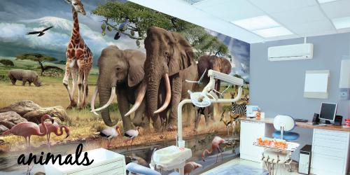 animal murals
