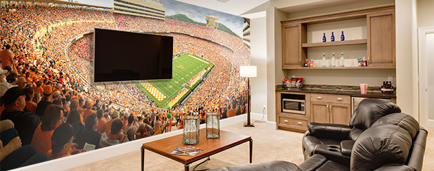 Room ideas murals for family game rooms for Family game room ideas