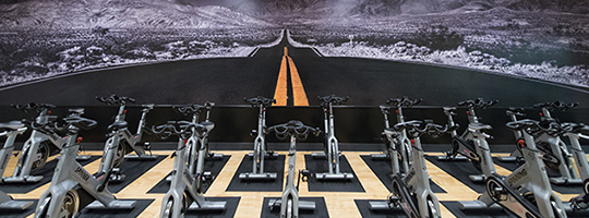 gym fitness wall murals murals your way